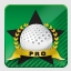 Golf Pro Achievement