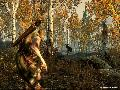 The Elder Scrolls V: Skyrim screenshot #16219