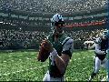 Madden NFL 09 screenshot #4884