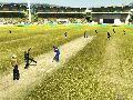 ICC Cricket 2007 screenshot #2395