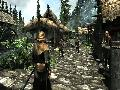 The Elder Scrolls V: Skyrim screenshot #15891