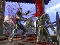 Ninja Gaiden II screenshot #4302