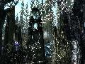 The Elder Scrolls V: Skyrim screenshot #20363